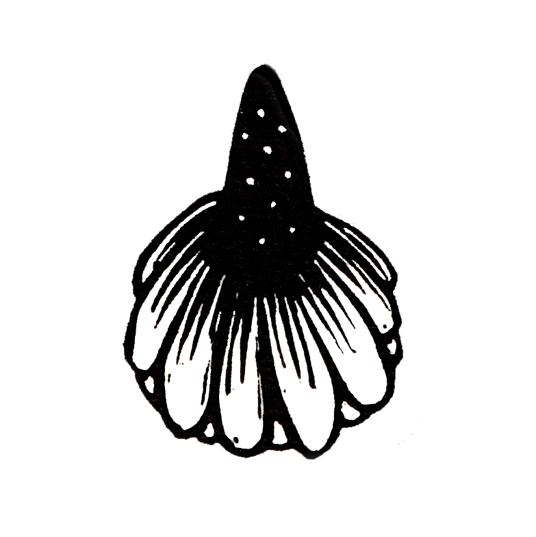 Coneflower logo. Hand printed linocut design which has been digitalized. Stickers are available in my Etsy store.